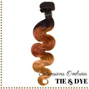 Extension Cheveux Bresilien Naturel Humain Ondule Wave Ombre Tie Dye
