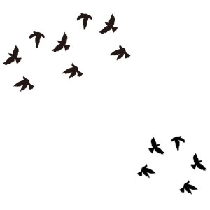 Tatouage Ephemere 19 Oiseaux Birds Noir Doigts Poignets Tattoo Fashion Summer Sticker 19